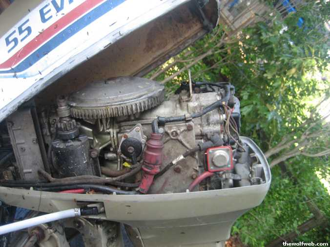 1977 55hp Motor  Does It Look Right  Page  1